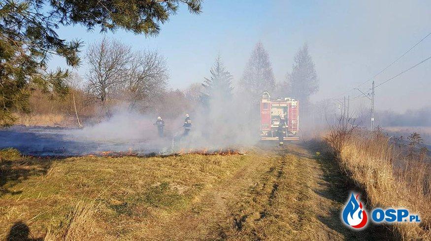 Pożar traw [10/2018] OSP Ochotnicza Straż Pożarna