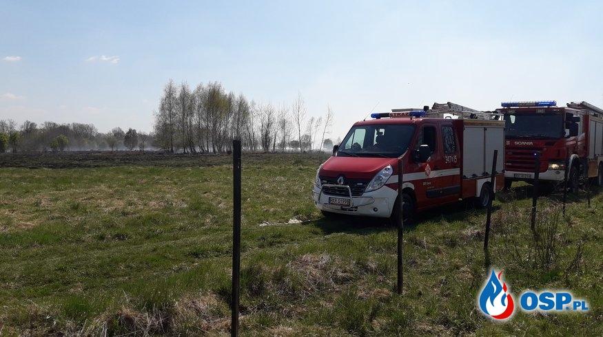 Pożar traw przy ul. Jesionowej OSP Ochotnicza Straż Pożarna