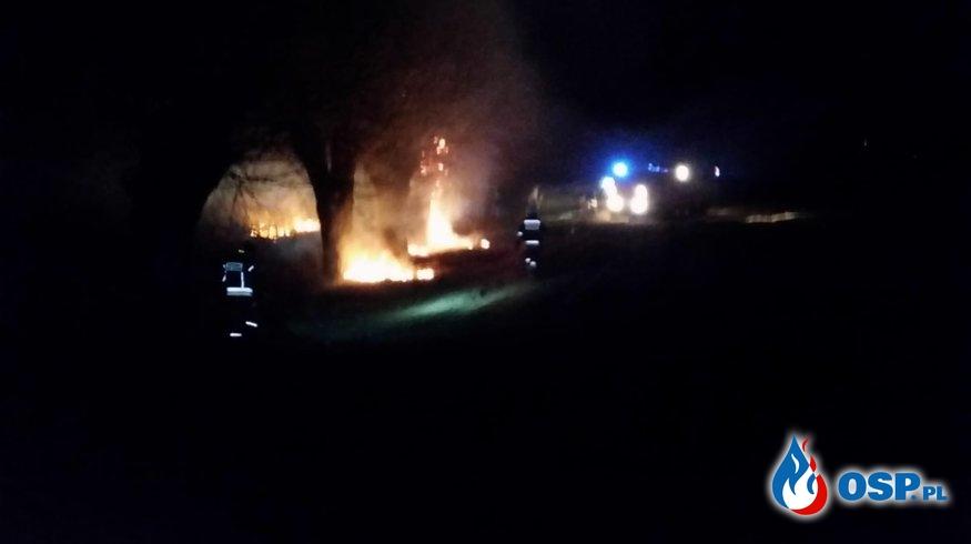 Pożar trawy w miejscowości Jeżewo OSP Ochotnicza Straż Pożarna
