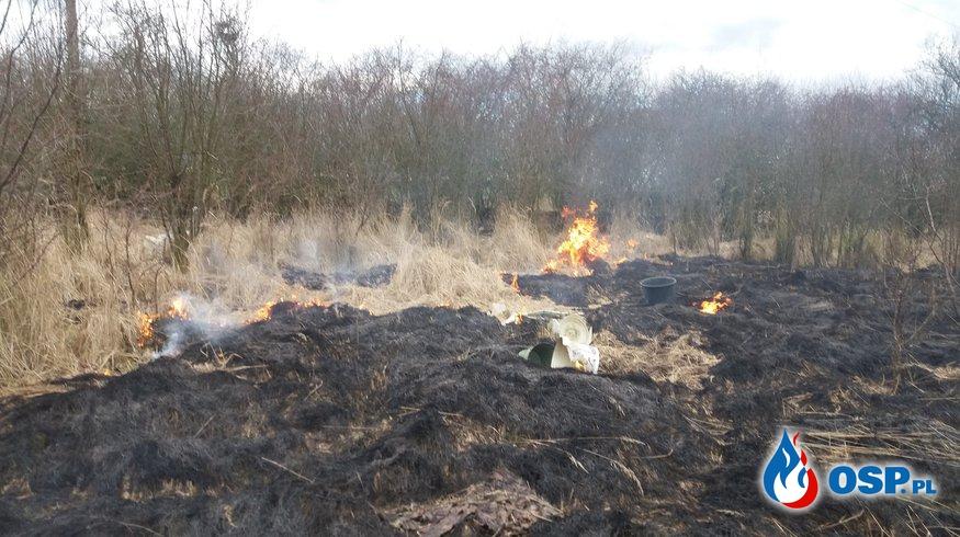 Dwa Pożary nieużytkow OSP Ochotnicza Straż Pożarna
