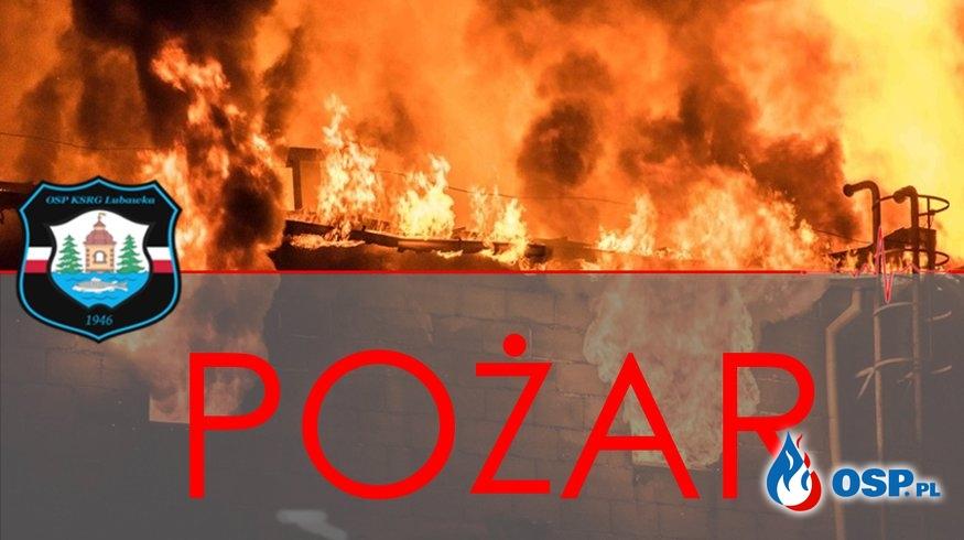 Pożar Mieszkania Starszej Kobiety OSP Ochotnicza Straż Pożarna