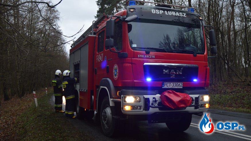 Powalone drzewo Lubasz-Dębe OSP Ochotnicza Straż Pożarna
