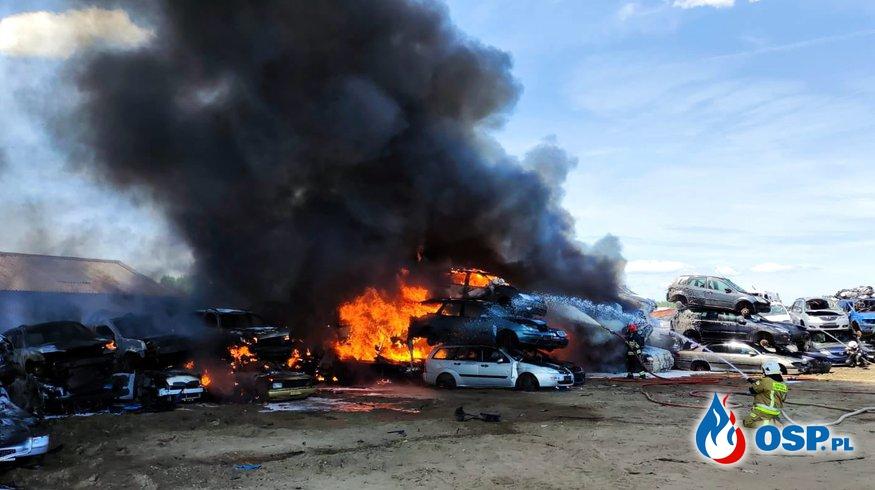 Ogromny pożar na stacji demontażu pojazdów. 12 zastępów strażaków w akcji. OSP Ochotnicza Straż Pożarna