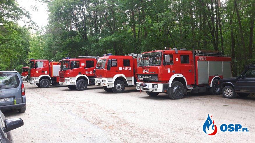 Niezapowiedziane ćwiczenia w lesie w Chrzelicach OSP Ochotnicza Straż Pożarna