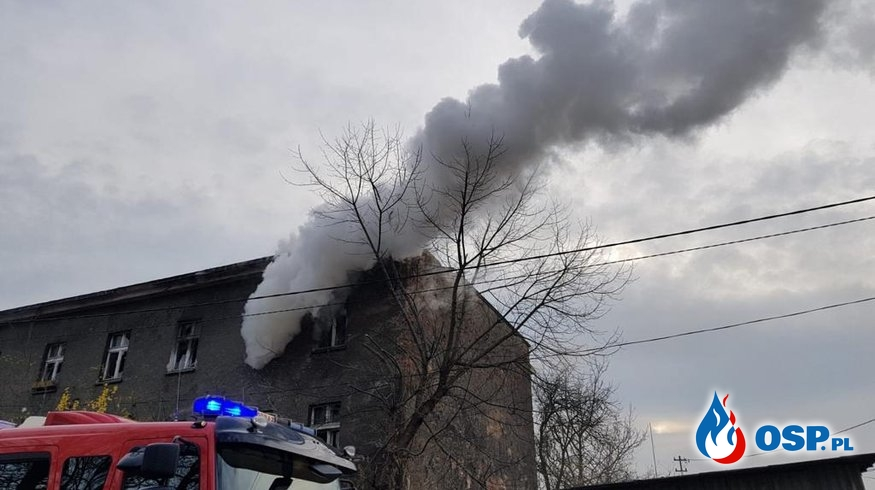Pożar pustostanu w Opolu. Prawdopodobnie doszło do podpalenia. OSP Ochotnicza Straż Pożarna