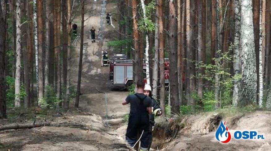Pożar Chełmska Góra - Chełmsko OSP Ochotnicza Straż Pożarna