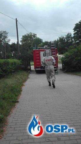 Szerszenie przy Ośrodku Zdrowia OSP Ochotnicza Straż Pożarna