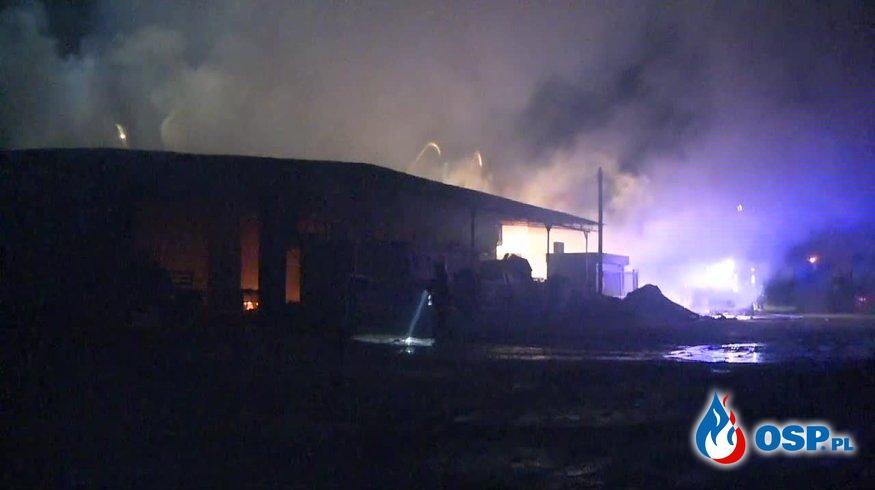 Pożar tartaku w Lubuskiem. W środku wybuchające butle z gazem. OSP Ochotnicza Straż Pożarna