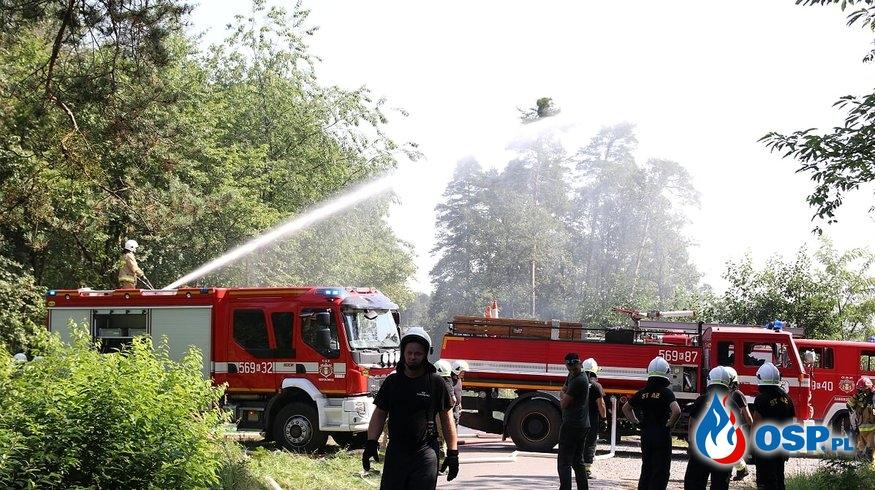 Ćwiczenia - Puszcza 2019 OSP Ochotnicza Straż Pożarna