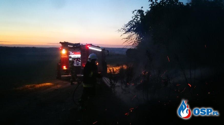 Pożar traw i zarośli OSP Ochotnicza Straż Pożarna