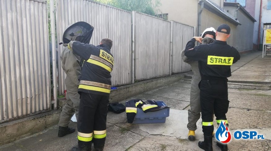 Miejscowe Zagrożenie Gniazdo Owadów Błonkoskrzydłych. OSP Ochotnicza Straż Pożarna