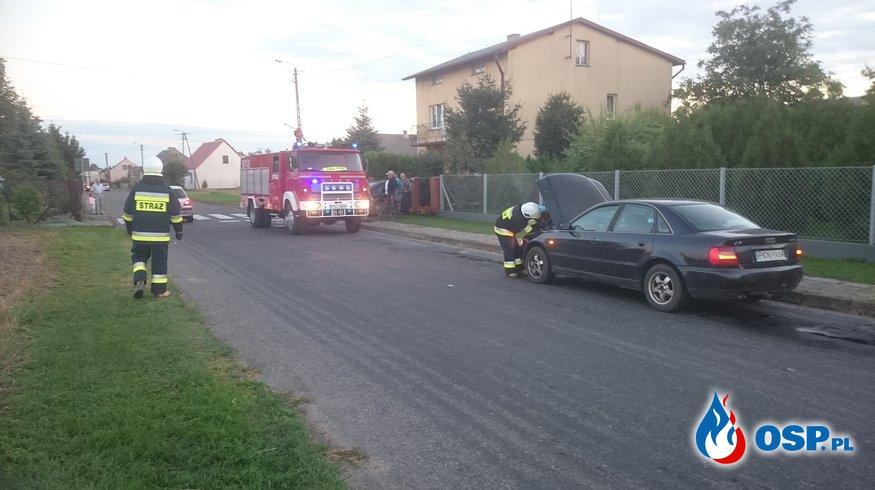 Plama oleju - Bielsko OSP Ochotnicza Straż Pożarna