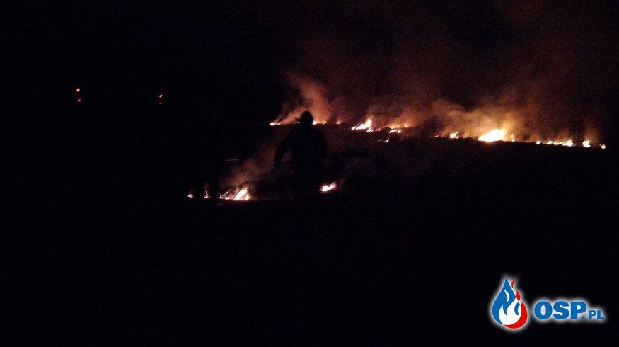 Dwa pożary traw jednego dnia OSP Ochotnicza Straż Pożarna