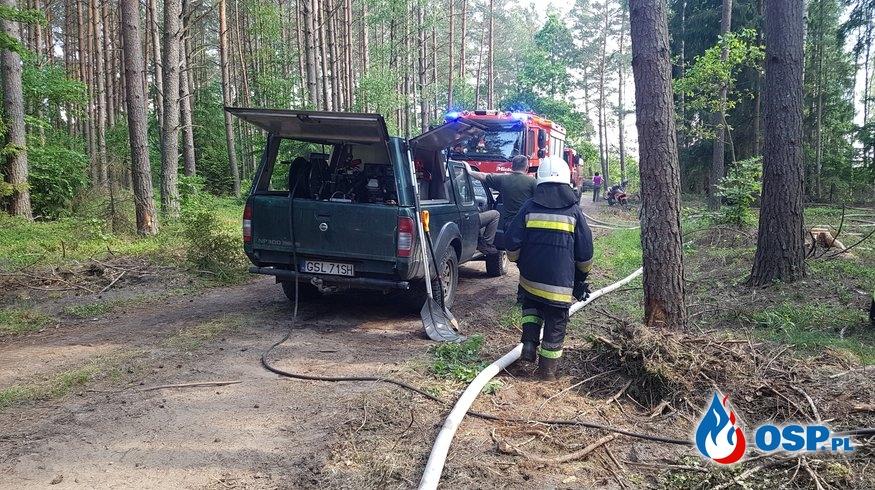 Pożar Lasu Korzybie-Obłęże 05-06-2019 OSP Ochotnicza Straż Pożarna