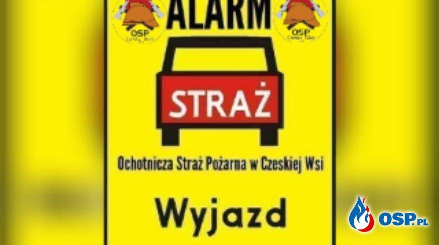 #12/2019 Gniazdo owadów  błonkoskrzydłowatych  na terenie przedszkola w Czeskiej Wsi OSP Ochotnicza Straż Pożarna