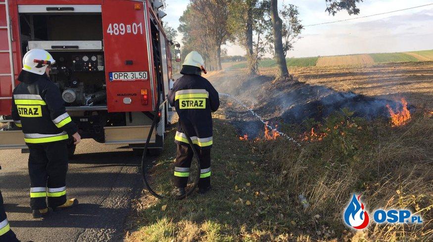 Pożar  suchej trawy na poboczu drogi OSP Ochotnicza Straż Pożarna