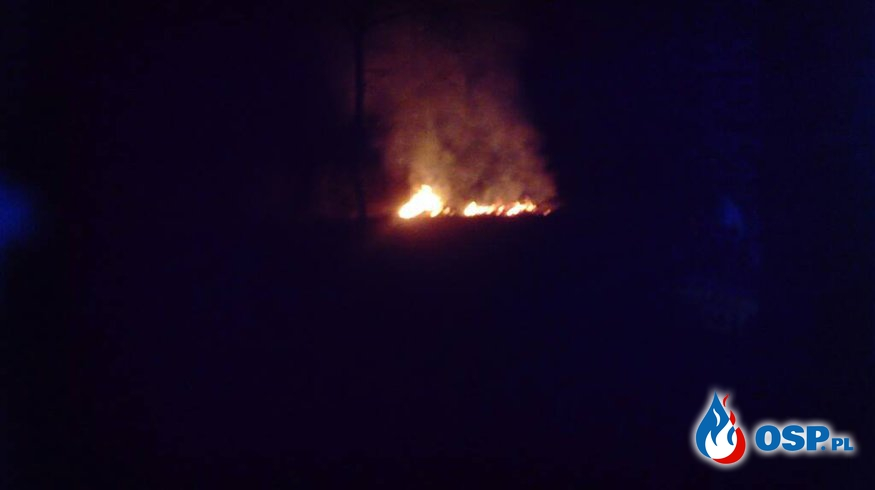 Pożar suchej trawy - Łupstych OSP Ochotnicza Straż Pożarna