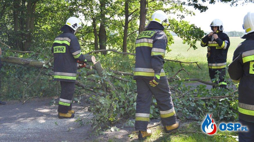 Przewrócone drzewo w Stajkowie OSP Ochotnicza Straż Pożarna
