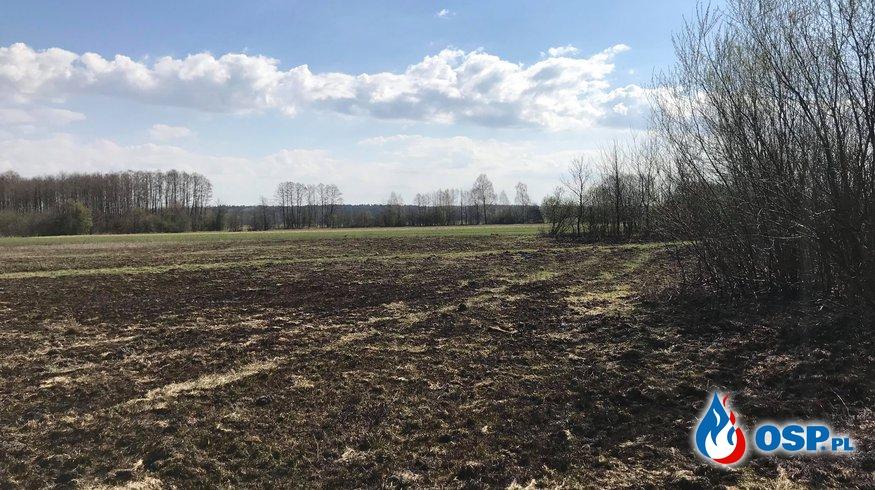 Pożar traw w Luszewie OSP Ochotnicza Straż Pożarna