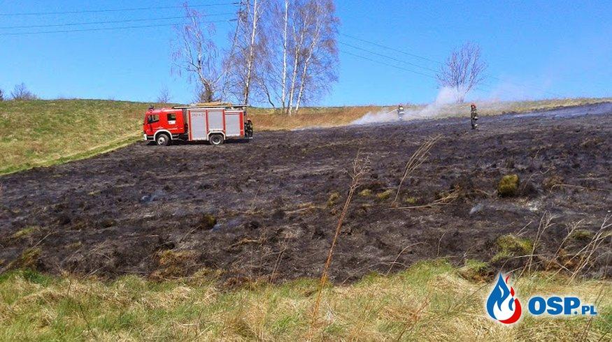 Dziwiszów: Pożar traw na Górnym Dziwiszowie. OSP Ochotnicza Straż Pożarna