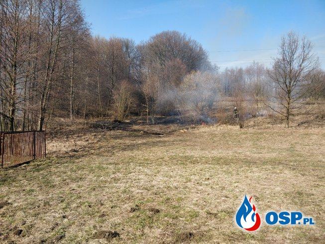 Pożar nieużytków - ul. Żniwna w Płazie OSP Ochotnicza Straż Pożarna