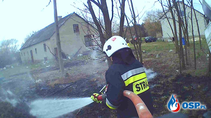 Pożar trawy i gałęzi przy DK7 OSP Ochotnicza Straż Pożarna
