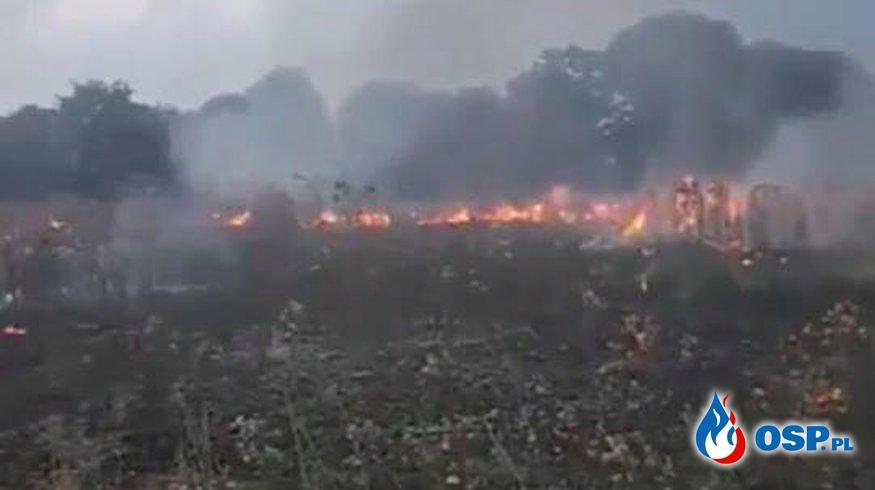 Pożar nieużytków w miejscowości Krzymów - VIDEO OSP Ochotnicza Straż Pożarna