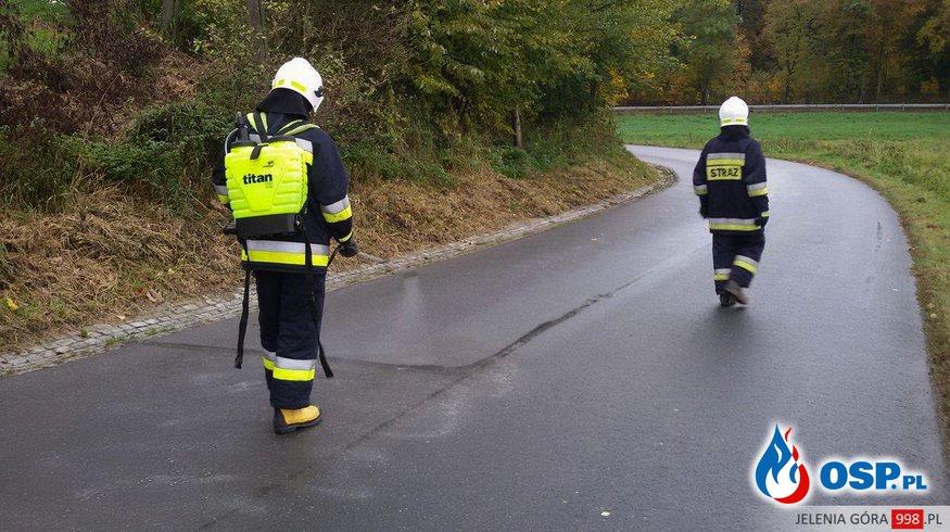 Plama ropopochodna na długim odcinku jezdni. OSP Ochotnicza Straż Pożarna