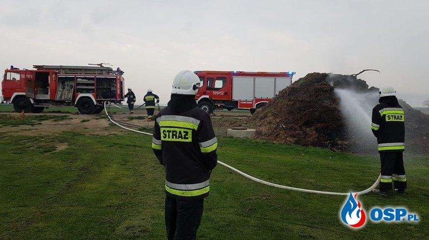 Pożar choinek OSP Ochotnicza Straż Pożarna
