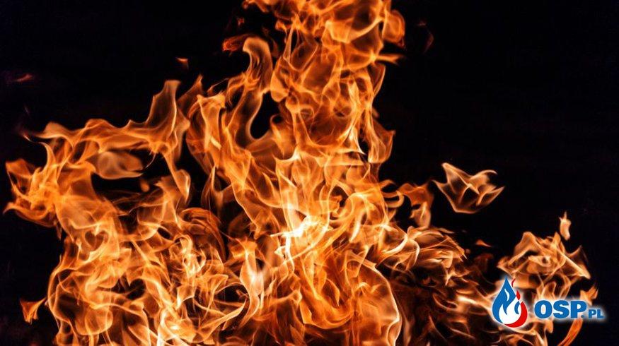Suchy i ciepły czas sprzyja pożarom OSP Ochotnicza Straż Pożarna