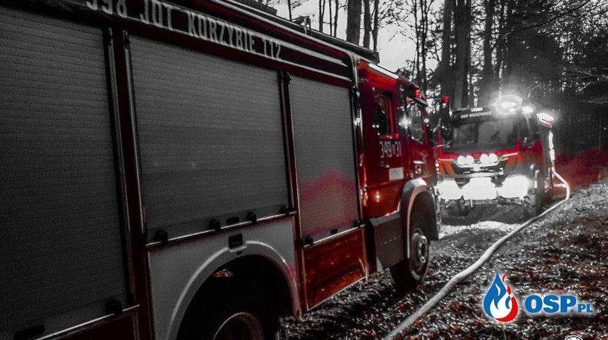 Pożar Lasu Warcino-Ciecholub OSP Ochotnicza Straż Pożarna