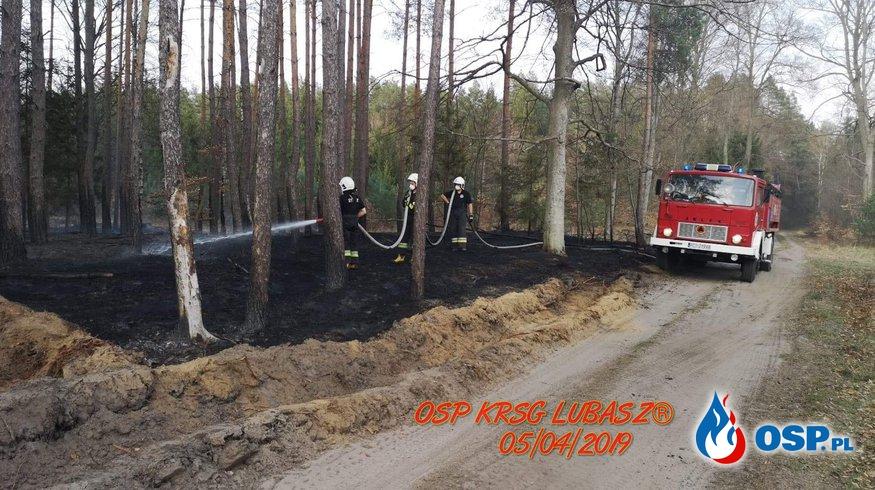 Wielki pożar Lasu OSP Ochotnicza Straż Pożarna