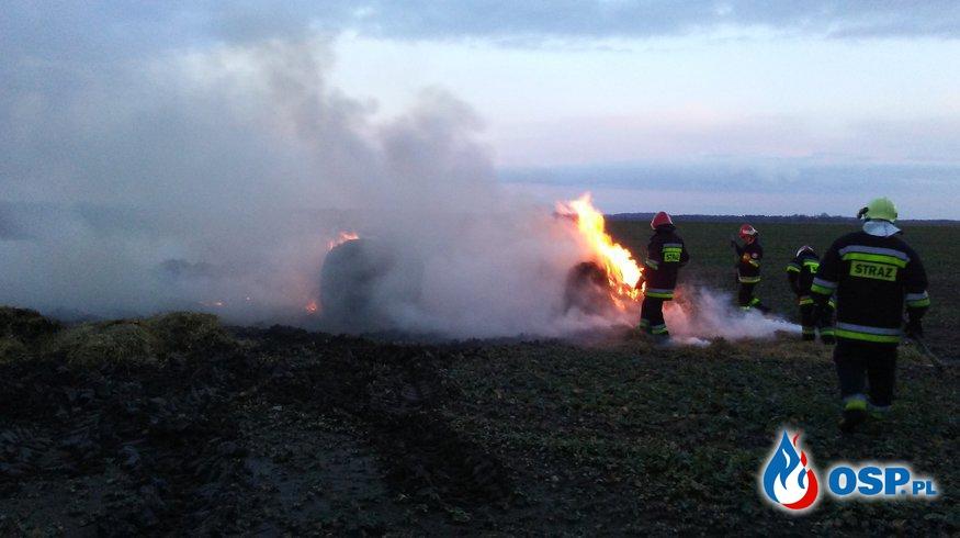 Pożar balotów. Paprotno 01.02.2018r. OSP Ochotnicza Straż Pożarna