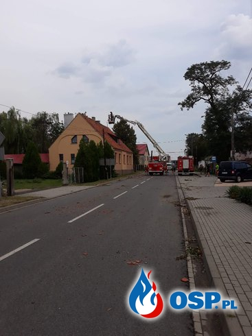 #11/2018 kolejne działanie w usuwaniu skutków wichury w Jankowicach Wielkich OSP Ochotnicza Straż Pożarna