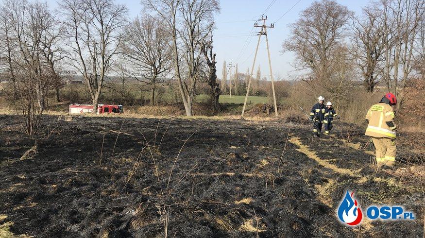 34/2021 Pożar trawy w Grzybnie OSP Ochotnicza Straż Pożarna