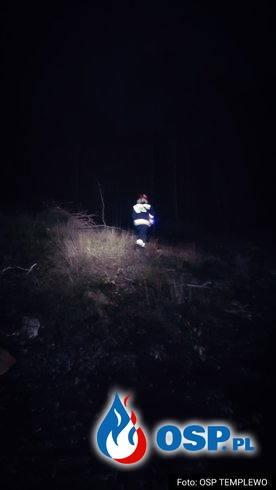 POŻAR na zrębie leśnym OSP Ochotnicza Straż Pożarna