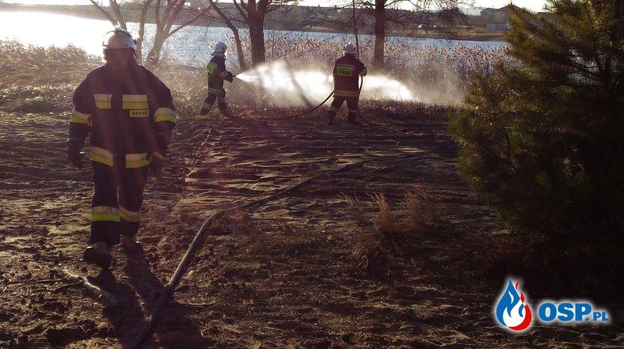 Niespodziewany pożar traw w przeddzień wigilii! OSP Ochotnicza Straż Pożarna