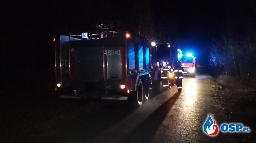 [27.10.2019] - Pożar poszycia leśnego - Płaczków-Piechotne OSP Ochotnicza Straż Pożarna