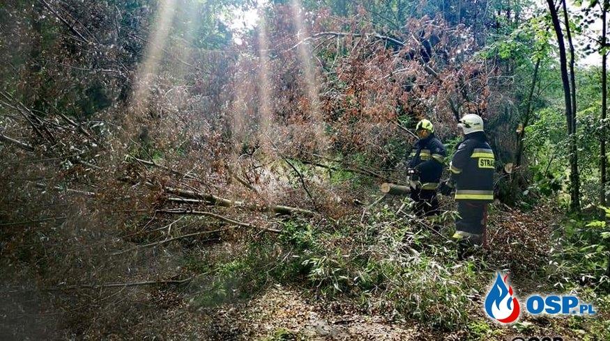 Chycina - z naturą nie wygrasz! OSP Ochotnicza Straż Pożarna