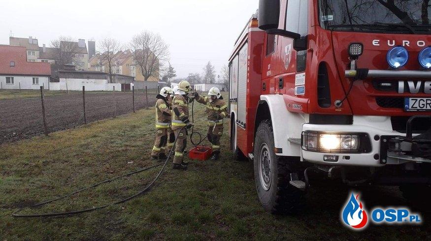 Pożar pojedyńczyego drzewa OSP Ochotnicza Straż Pożarna