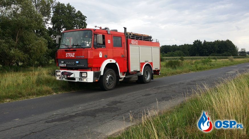 Pożar suchej trawy i słomy OSP Ochotnicza Straż Pożarna