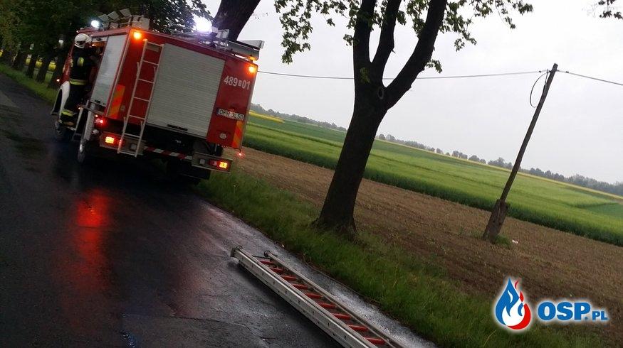 Niebezpieczne konary drzewa nad jezdnią Gostomia – Nowa Wieś OSP Ochotnicza Straż Pożarna