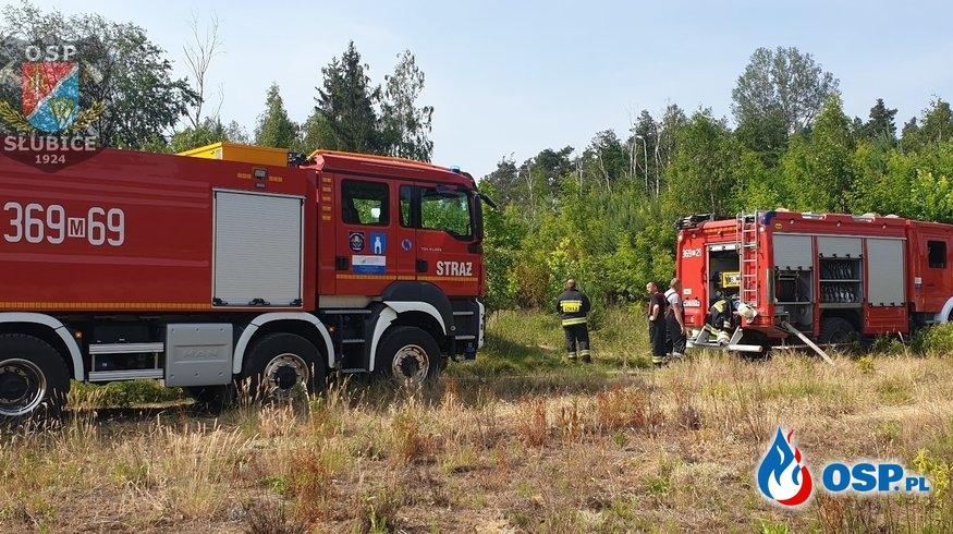 Pożar spowodowany zwarciem linii energetycznej OSP Ochotnicza Straż Pożarna