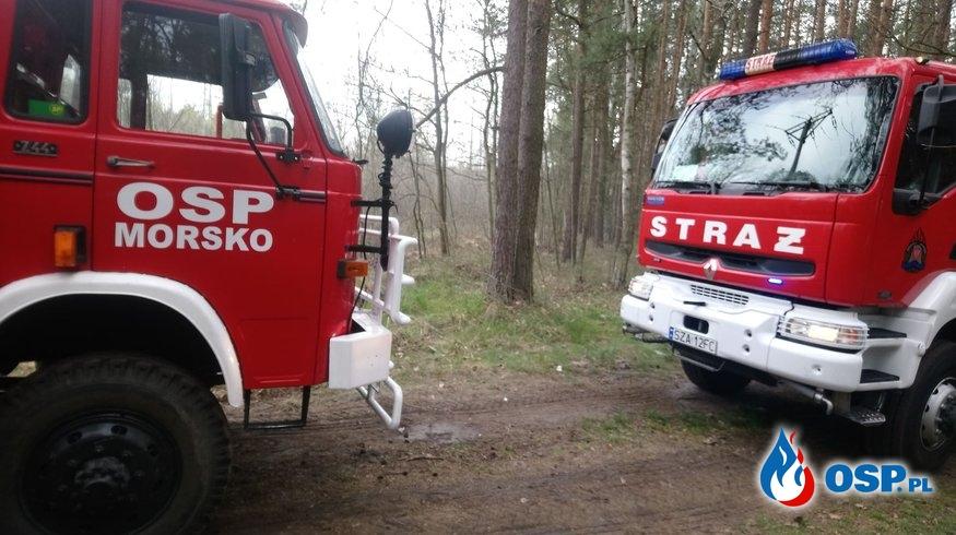 pożar lasu Góra Włodowska 24,04,2020 OSP Ochotnicza Straż Pożarna