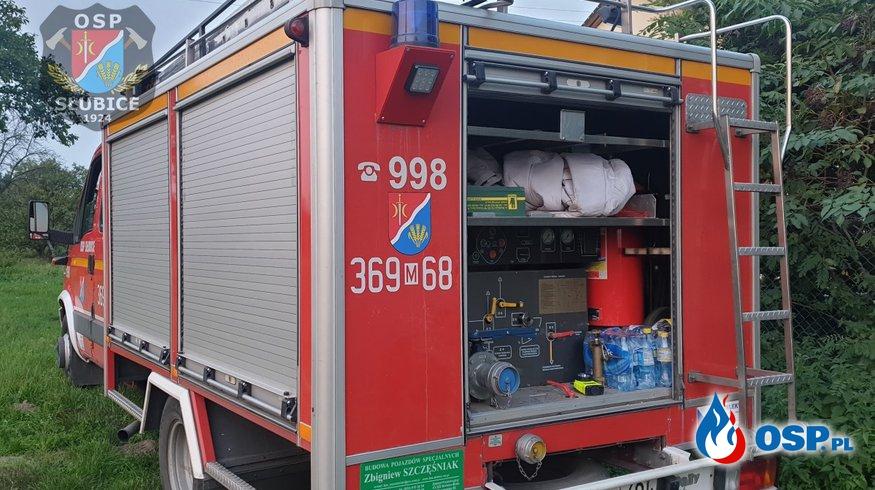 Szerszenie zagnieździły się w konstrukcji dachu OSP Ochotnicza Straż Pożarna