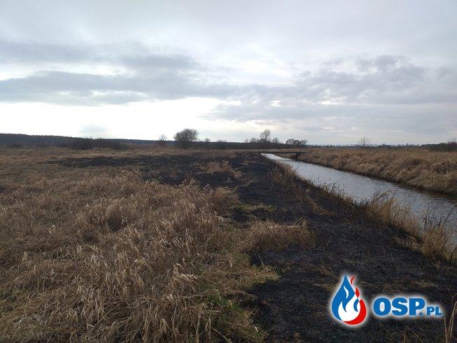2019-02-08 Godz.13:40 ogień na łąkach OSP Ochotnicza Straż Pożarna