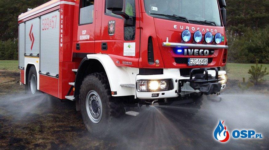 Pożar poszycia leśnego i trawy w miejscowości Bibianów OSP Ochotnicza Straż Pożarna