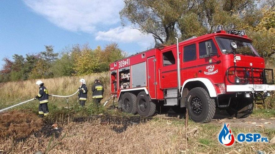 Pożar suchej trawy i śmieci OSP Ochotnicza Straż Pożarna