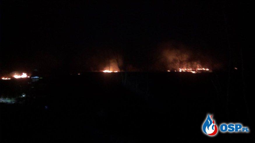 Duży pożar nieużytków OSP Ochotnicza Straż Pożarna