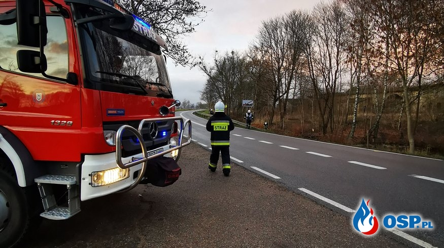 Gmina Biały Bór. Powalone Drzewo OSP Ochotnicza Straż Pożarna